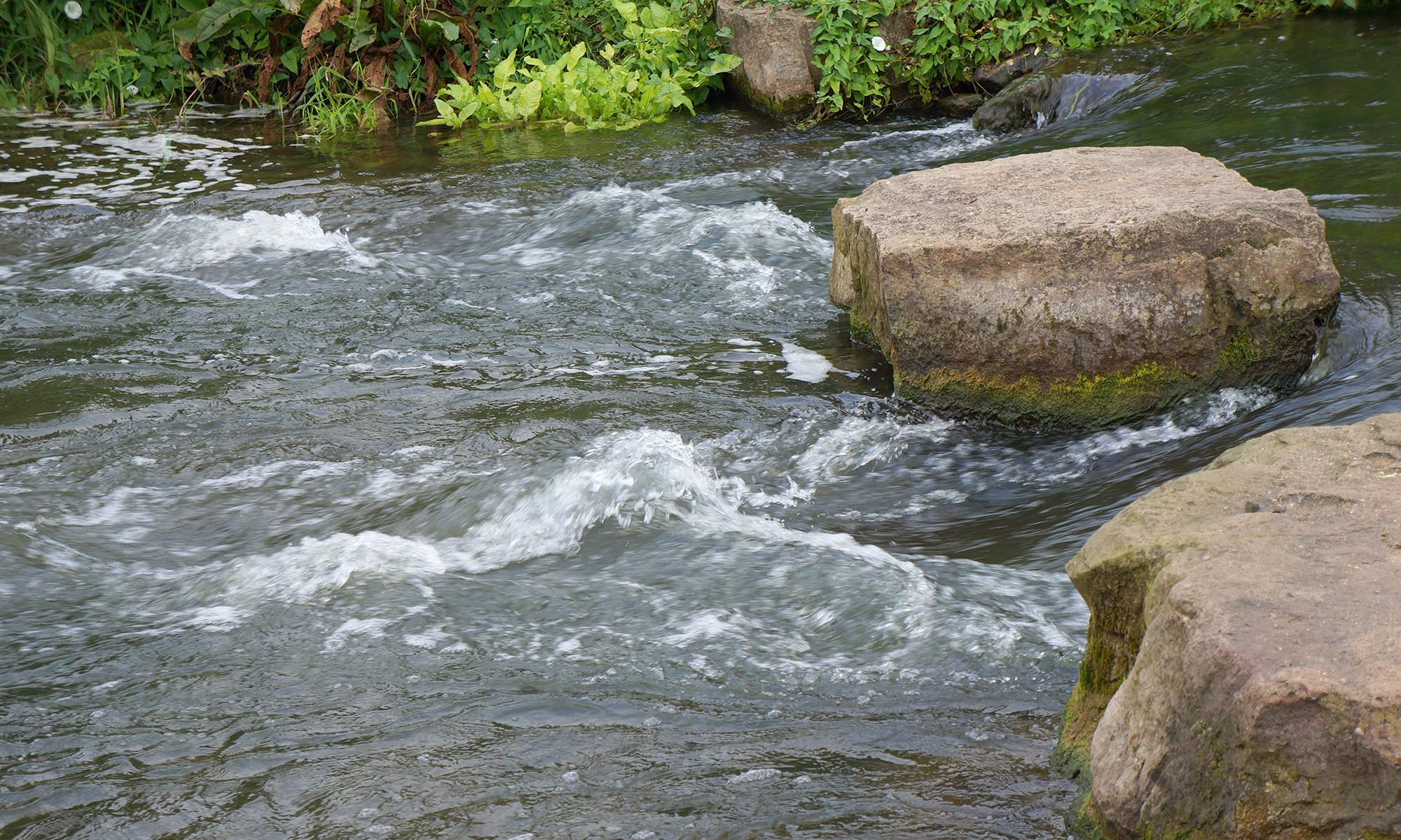Foto-Wasser